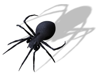 Spider PNG Clipart Image